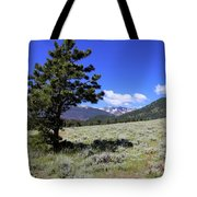 Rocky Mountain Foothills Tote Bag