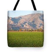 Romaine Lettuce Tote Bag