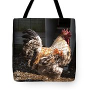 Rooster In A Coop Tote Bag