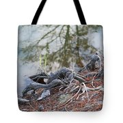 Rooted Lake Edge Tote Bag