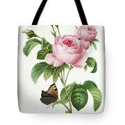Rosa Centifolia Tote Bag by Pierre Joseph Redoute
