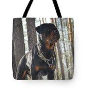 Rottweiler Kuchum Tote Bag