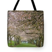Rows Of Cherry Blossom Trees In Spring Tote Bag