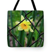 1 Sad Daffy Behind Bars Tote Bag