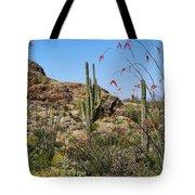 Saguaro National Park East Scene Iv Tote Bag