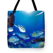 Saipan Marine Life Tote Bag