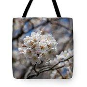 Sakura Spring Tote Bag