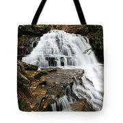 Salt Springs Waterfall Tote Bag