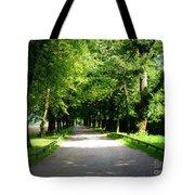 Salzburg Lane Tote Bag