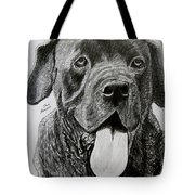 Sampson Tote Bag