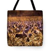 Sandhills In The Corn Tote Bag