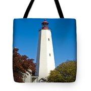 Sandy Hook Lighthouse Tote Bag