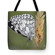 Satyr On The Grass Tote Bag