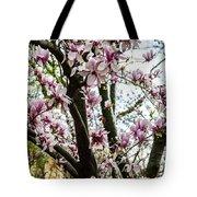 Saucer Magnolias In Central Park Tote Bag