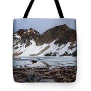 Sawtooth Lake Tote Bag