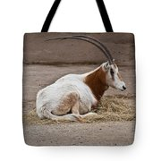 Scimitar Horned Dammah Tote Bag