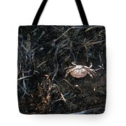 Scuttling To Safety Tote Bag
