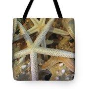 Starfish Treasure Tote Bag