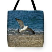 Seagull Landing Tote Bag