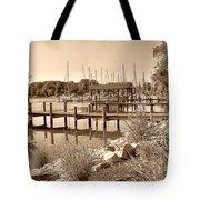 Sepia Waterscape Tote Bag