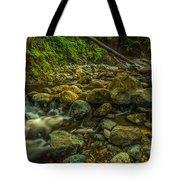 Shackleford Falls Tote Bag