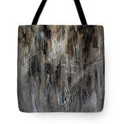 Shamanic Journey Tote Bag
