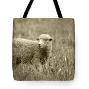 Sheep In A Meadow Tote Bag