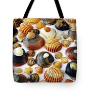 Shell Background Tote Bag