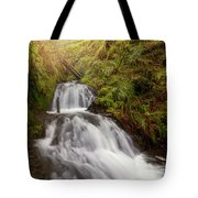 Shepperd's Dell Falls Tote Bag