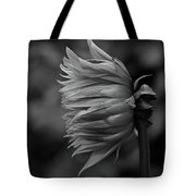 Shut Out The Darkness Tote Bag