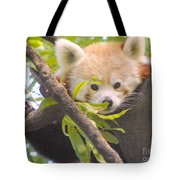 Shy Red Panda Tote Bag
