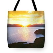 Silhouette Of Lone Cardon Cactus Plant Tote Bag