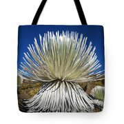 Silversword Plant Tote Bag