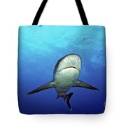 Silvertip Shark Tote Bag