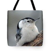 Sitta Carolinensis Tote Bag