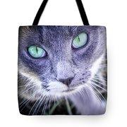 Skitty Cat Tote Bag