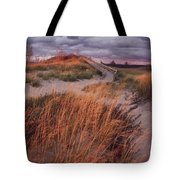 Sleeping Bear Dunes National Lakeshore Tote Bag