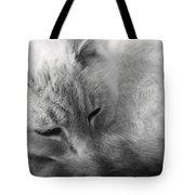 Sleepy Tote Bag