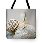 Slug Tote Bag