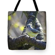 Tufted Titmouse - Small Bird Tote Bag