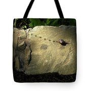 Snail Trail Tote Bag