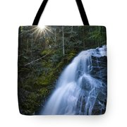 Snow Creek Falls Tote Bag