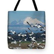 Snow Geese In Skagit Valley Tote Bag