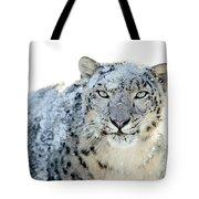 Snow Leopard Tote Bag