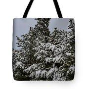 Snowy Trees Tote Bag