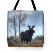 Son Of A King Tote Bag