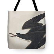 Sooty Tern Tote Bag