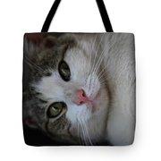 Soxx Tote Bag