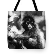 Spider Monkey Tote Bag