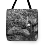 Sprawling Live Oak Tote Bag